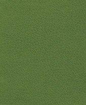 Brisa 33-4448 - Apple Green #1