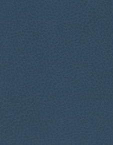 Brisa - Blue Sea - 2621 #1