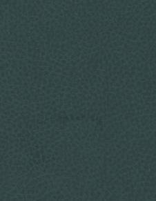 Brisa 33-4303 - Seaweed #1