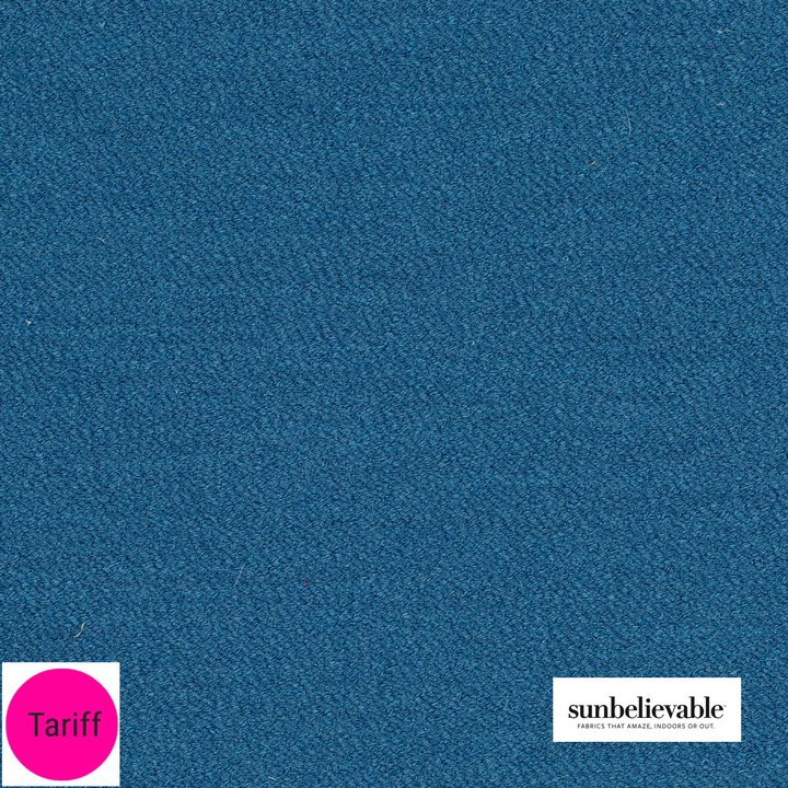 Bikini Blueberry.jpg