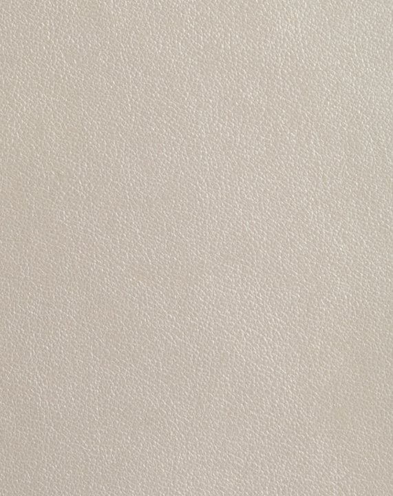 Metallic Finesse - Pearl Cream #1